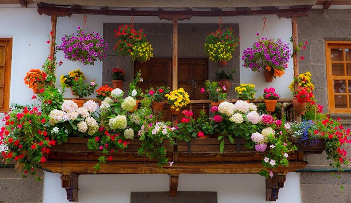 El Ayuntamiento Premiara Los Balcones Y Ventanas Mejor Decorados Con - Fotos-de-balcones-con-flores