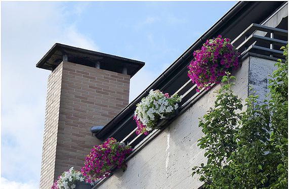 Segunda Edicion Del Concurso De Decoracion Con Flores De Ventanas Y - Fotos-de-balcones-con-flores